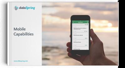 Download dataSpring's Mobile Capabilities ebook