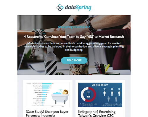 dataSpring Newsletter November 2017
