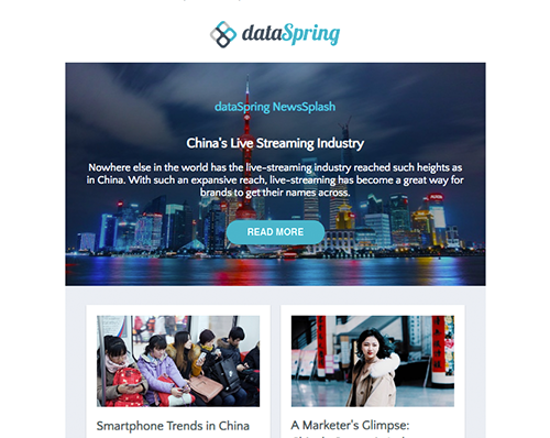 dataSpring Newsletter November 2018