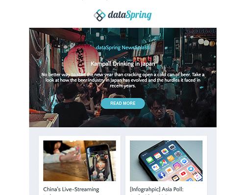 dataSpring Newsletter January 2019