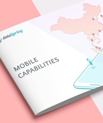 dataSpring Mobile Capabilities Ebook