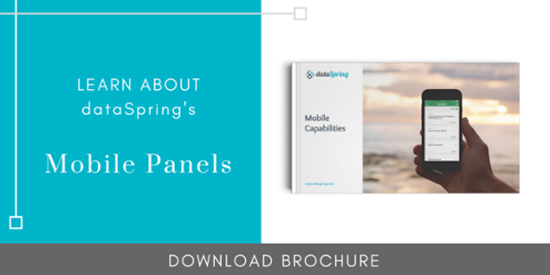 dataSpring Mobile Capabilities Brochure